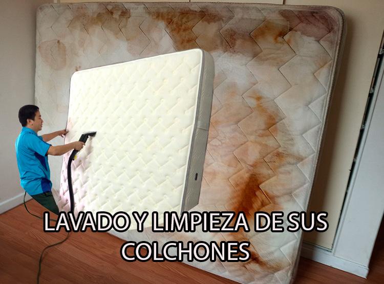 Expertos en el lavado de colchones, a domicilio en en Bogota